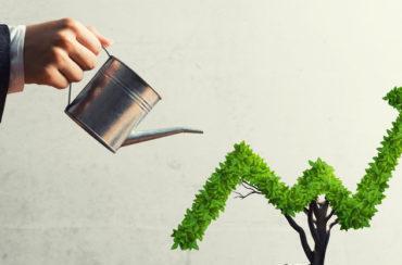 Mão feminina regando uma planta, representando a sustentabilidade relacionada aos investimentos financeiros